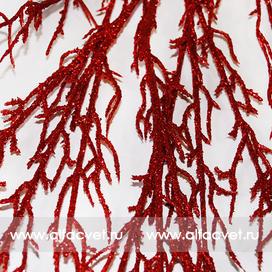 аспарагус цвета красный 4