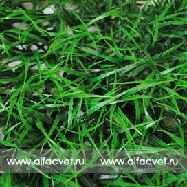 газон цвета зеленый 59