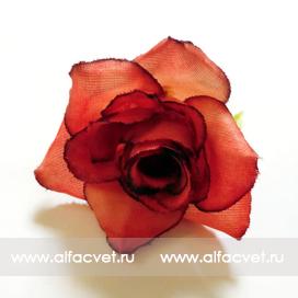 головка роз диаметр 5 цвета красный 4