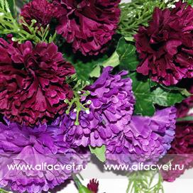 гвоздики цвета фиолетовый с сиреневым 50