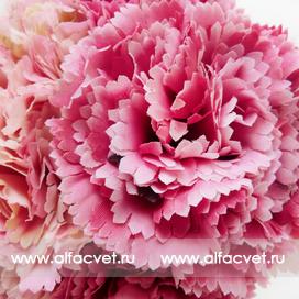 букет гвоздик цвета темно-розовый с розовым 45