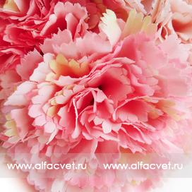 букет гвоздик цвета розовый 5