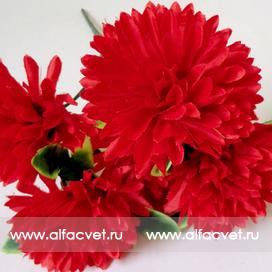букет хризантем шарики цвета красный 4
