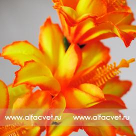 ветки колокольчиков (гладиолус) цвета оранжевый 2