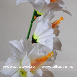 ветки колокольчиков (гладиолус) цвета белый 6
