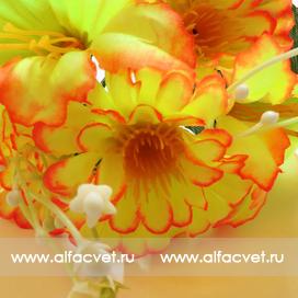 маргаритка-колокольчик цвета салатовый 39