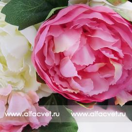 букет пионов цвета розовый с белым 14