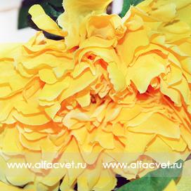 ветка пиона цвета желтый 1