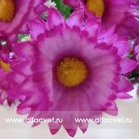 ромашка цвета фиолетовый 7