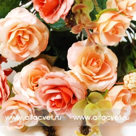 розы цвета кремовый 24