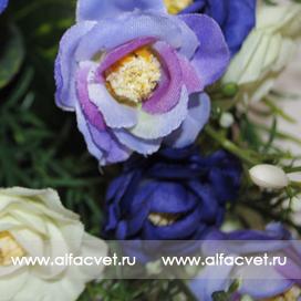 розы цвета синий с белым 41