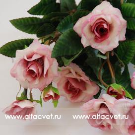 маленькие розы цвета розовый 5