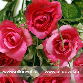 букет роз с добавкой осока цвета малиновый 11
