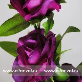 ветки роз цвета фиолетовый 7