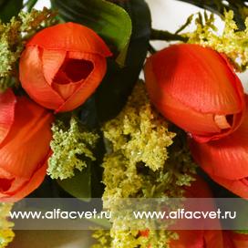 букет тюльпанов цвета красный 4
