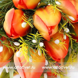 тюльпаны цвета оранжевый 2