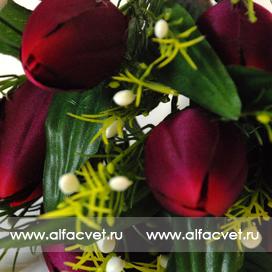 тюльпаны цвета фиолетовый 7