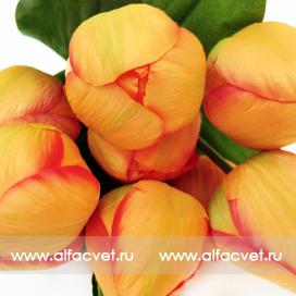 букет тюльпанов цвета светло-оранжевый 25