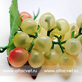 виноград маленький цвета желтый 1