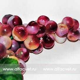 виноград средний цвета красный 4