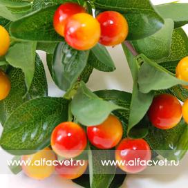 ягоды цвета желтый с красным 20