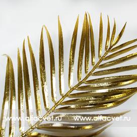 золотая пальмовая ветвь цвета золотой 62